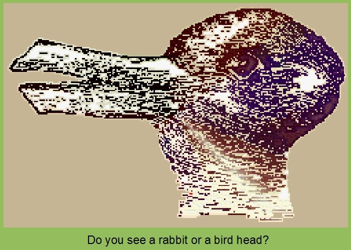 Rabbit or bird